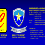CELESTIAL SECURITY AND SURVEILLANCE INC